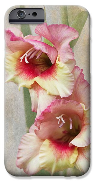 Gladiolas iPhone Cases - Gladiola iPhone Case by Angie Vogel