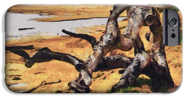 Gnarly iPhone Cases - Gnarly Tree iPhone Case by Barbara Snyder