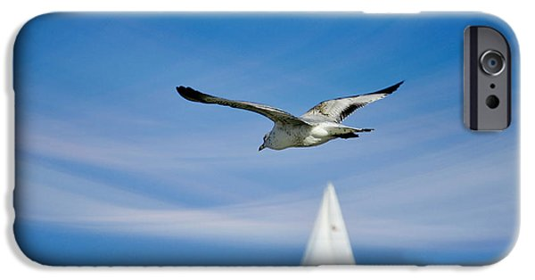 Flying Seagull iPhone Cases - Good Karma iPhone Case by Laura  Fasulo