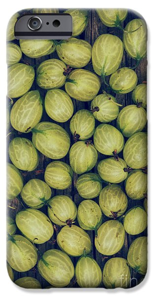 Berries iPhone Cases - Gooseberries iPhone Case by Tim Gainey