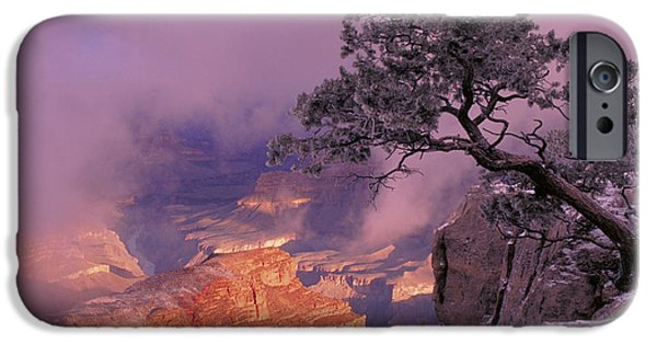 Winter Storm iPhone Cases - Grand Canyon National Park iPhone Case by George Ranalli