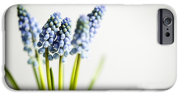 Grape iPhone Cases - Grape Hyacinth iPhone Case by Nailia Schwarz