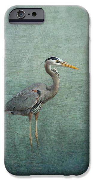 Recently Sold -  - Fauna iPhone Cases - Great Blue Heron iPhone Case by Kim Hojnacki
