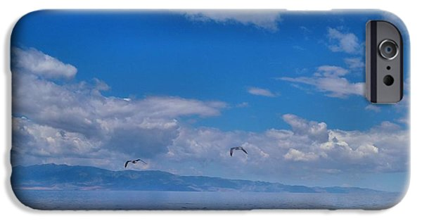 Flying Seagull iPhone Cases - Great Salt Lake iPhone Case by Dan Sproul