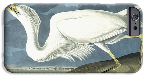 Heron Paintings iPhone Cases - Great White Heron iPhone Case by John James Audubon