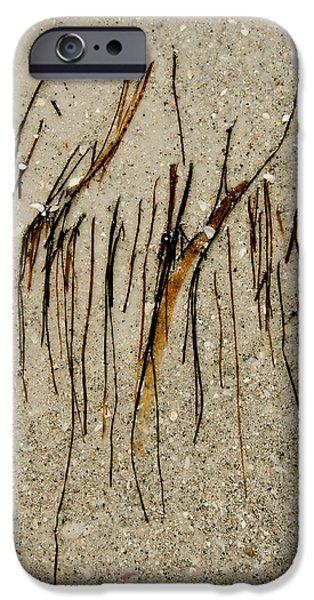 Panama City Beach iPhone Cases - Gulf Art iPhone Case by KM Corcoran
