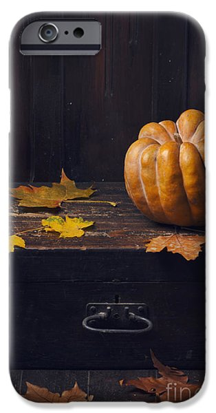 Agriculture Pyrography iPhone Cases - Halloween Pumpkin iPhone Case by Jelena Jovanovic
