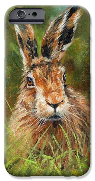 Rabbit iPhone Cases - hARE iPhone Case by David Stribbling