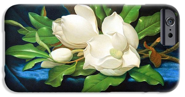 Cora Wandel iPhone Cases - Heades Giant Magnolias On A Blue Velvet Cloth iPhone Case by Cora Wandel