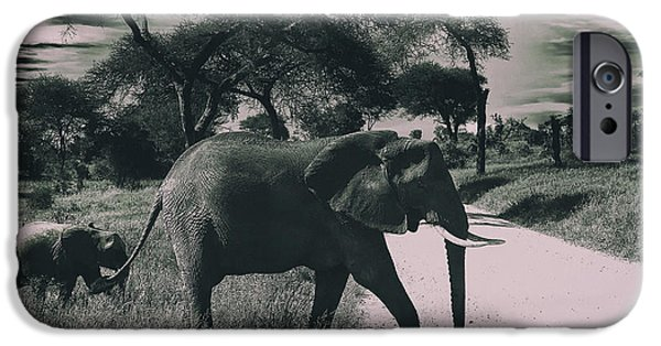 Elephant iPhone Cases - Holding  Onto Moms Tail iPhone Case by Christine Sponchia