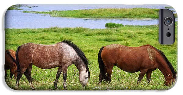 North Sea iPhone Cases - Horses iPhone Case by Angela Doelling AD DESIGN Photo and PhotoArt
