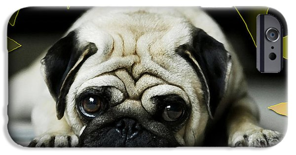 Puppy Iphone Case iPhone Cases - House Broken Pug Puppy iPhone Case by Marvin Blaine
