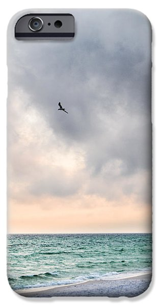 Flying Seagull iPhone Cases - Into the Sunset iPhone Case by Shelby  Young