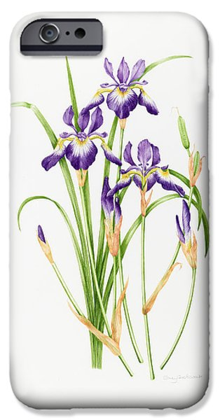 In Bloom iPhone Cases - Iris Sibirica iPhone Case by Sally Crosthwaite