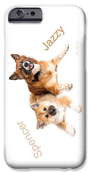 Gaia iPhone Cases - Islandig Sheepdog Iphone 4 case iPhone Case by Iris Richardson