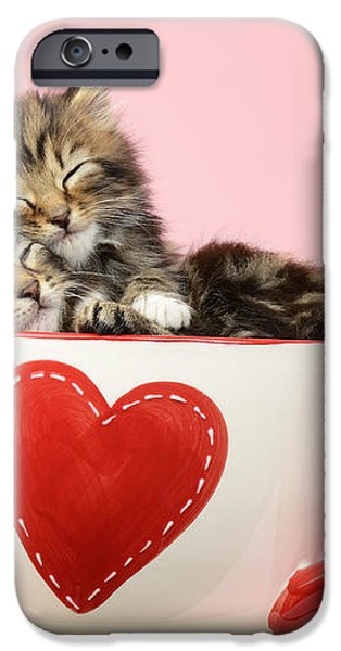 It Must Be Love iPhone Case by Greg Cuddiford
