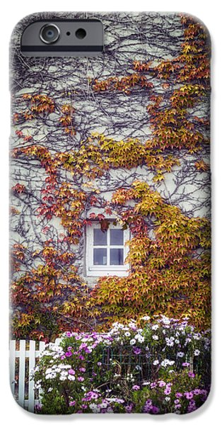 Overgrown iPhone Cases - Ivy House iPhone Case by Joana Kruse