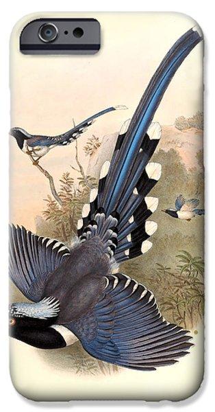 John Gould Birds iPhone Case by Gary Grayson