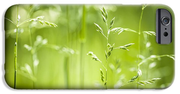 Young iPhone Cases - June green grass flowering iPhone Case by Elena Elisseeva