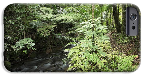 Rainforest iPhone Cases - Jungle stream iPhone Case by Les Cunliffe
