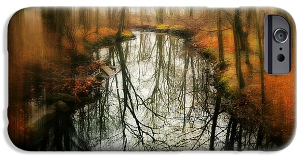 Nature Center Pond iPhone Cases - Just One Wish iPhone Case by Diana Angstadt