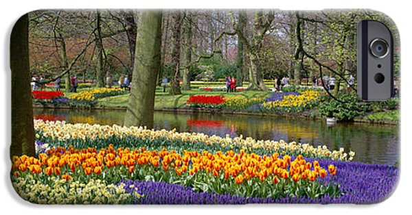 Floral Photographs iPhone Cases - Keukenhof Garden Lisse The Netherlands iPhone Case by Panoramic Images