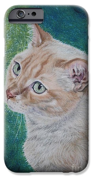 Stripes Pastels iPhone Cases - Kiko iPhone Case by Linda Eversole