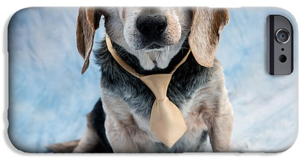 Dog iPhone Cases - Kippy Beagle Senior and Best Dog Ever iPhone Case by Iris Richardson