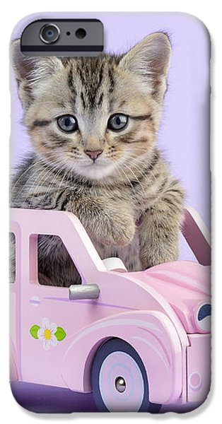 Kitten In Pink Car iPhone Case by Greg Cuddiford