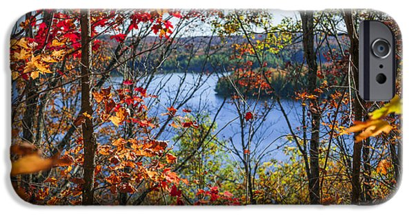Autumn Woods iPhone Cases - Lake and fall forest iPhone Case by Elena Elisseeva
