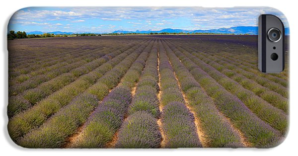 World Destination iPhone Cases - Lavender Field, French Provence iPhone Case by Adam Sylvester