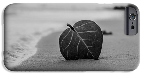 Ground Level iPhone Cases - Leaf on a Beach iPhone Case by Mountain Dreams