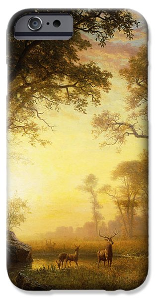 Nineteenth Century iPhone Cases - Light in the Forest iPhone Case by Albert Bierstadt