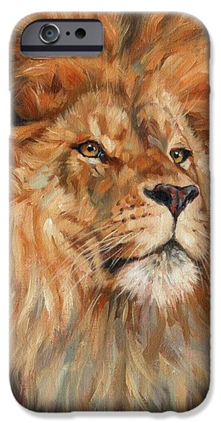Lion Print iPhone Cases - Lion iPhone Case by David Stribbling