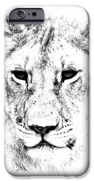 East Africa Photographs iPhone Cases - Lion Portrait iPhone Case by Aidan Moran