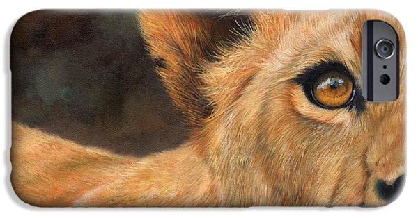 Lion Print iPhone Cases - Lioness iPhone Case by David Stribbling