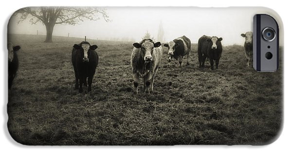 Fog iPhone Cases - Livestock iPhone Case by Les Cunliffe