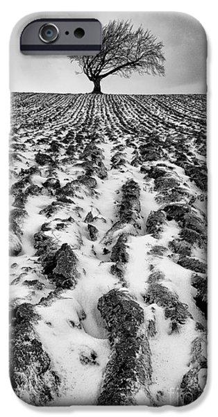 Lone tree iPhone Case by John Farnan