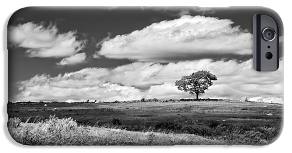 Lone Tree iPhone Cases - Lone Tree and Sky In Blueberry Field Maine Photograph  iPhone Case by Keith Webber Jr