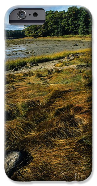 Maine Roads iPhone Cases - Low Tide Reach Road iPhone Case by Thomas R Fletcher