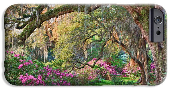 Recently Sold -  - Overhang iPhone Cases - Magnolia Plantation Azaleas iPhone Case by Jack Nevitt