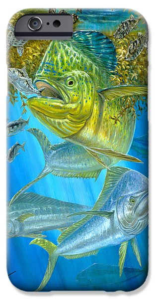 Terry Fox iPhone Cases - Mahi Mahi Hunting In Sargassum iPhone Case by Terry  Fox