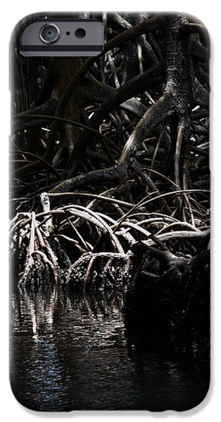 Mangrove Forest of the Los Haitises National Park Dominican Republic iPhone Case by Andrei Filippov
