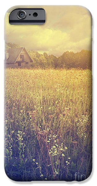 Shed iPhone Cases - Meadow iPhone Case by Jelena Jovanovic