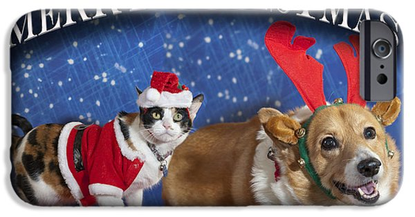 Animals Photos iPhone Cases - Merry Christmas iPhone Case by Melany Sarafis