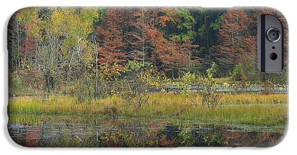 Arkansas iPhone Cases - Millwood Lake State Park Arkansas iPhone Case by Tim Fitzharris