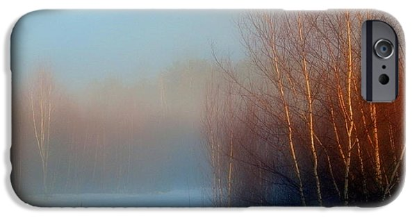 Mist iPhone Cases - Mist of the Morning iPhone Case by Karen Cook