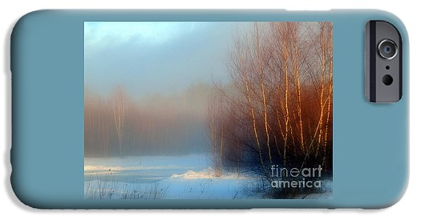 Fog Mist iPhone Cases - Mist of the Morning iPhone Case by Karen Cook