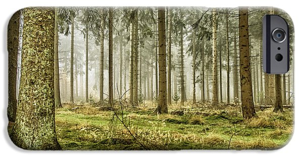Morning iPhone Cases - Misty forest iPhone Case by Patricia Hofmeester