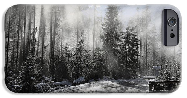 Winter Storm iPhone Cases - Misty Morning  iPhone Case by Mariola Bitner